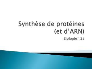 Synthèse de protéines    (et d'ARN)