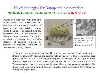Novel Strategies for Nanoparticle Assemblies