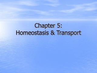 Chapter 5: Homeostasis  Transport