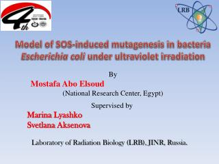 By Mostafa Abo Elsoud (National Research Center, Egypt)