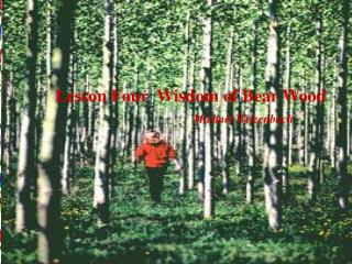 Lesson Four  Wisdom of Bear Wood                         Michael Welzenbach