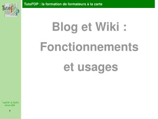 Blog et Wiki : Fonctionnements  et usages