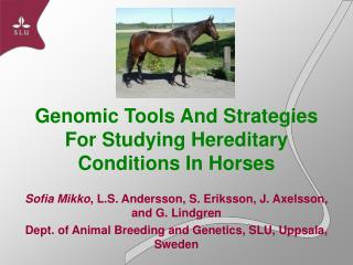 Genomic Tools And Strategies For Studying Hereditary Conditions In Horses