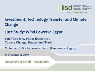 Investment, Technology Transfer and Climate Change Case Study: Wind Power in Egypt