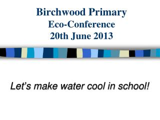 Birchwood Primary Eco-Conference 20th June 2013