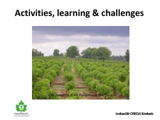 Activities, learning & challenges