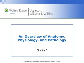 An Overview of Anatomy, Physiology, and Pathology