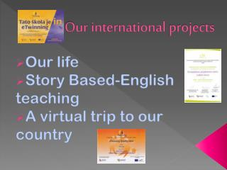 Our international projects