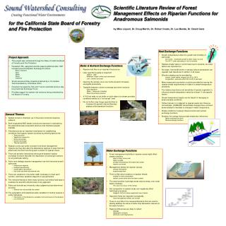 Scientific Literature Review of Forest