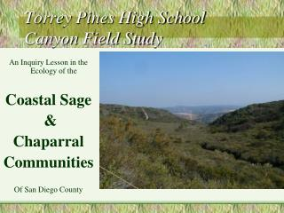 Torrey Pines High School Canyon Field Study