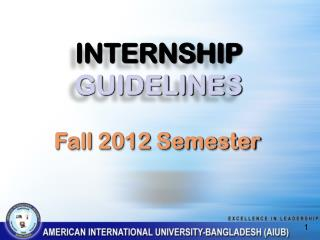 INTERNSHIP GUIDELINES