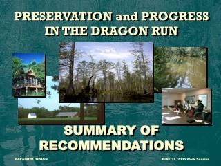 PRESERVATION and PROGRESS IN THE DRAGON RUN SUMMARY OF RECOMMENDATIONS