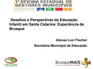 Desafios e Perspectivas da Educação Infantil em Santa Catarina: Experiência de Brusque