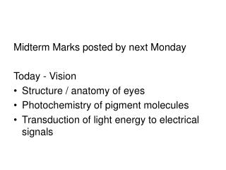Midterm Marks posted by next Monday Today - Vision Structure / anatomy of eyes