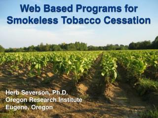 Web Based Programs for Smokeless Tobacco Cessation