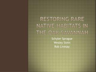 Restoring Rare  Native Habitats in the Oak Savannah