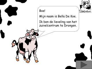 Boe! Mijn naam is Bella De Koe. Ik ben de lieveling van het zuivelcentrum te Drongen.