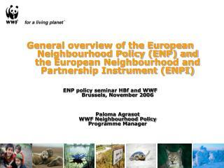 General overview of the European Neighbourhood Policy ENP and the European Neighbourhood and Partnership Instrument ENPI