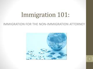 Immigration 101: