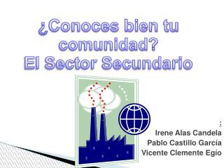 :                           Irene Alas Candela                           Pablo Castillo García
