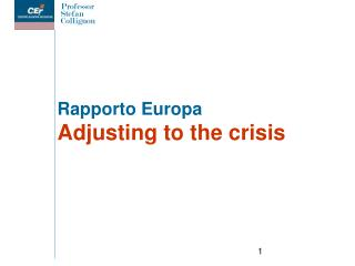 Rapporto Europa Adjusting to the crisis