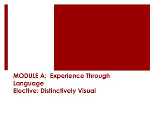 MODULE A:  Experience Through Language Elective: Distinctively Visual