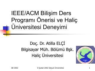 IEEE/ACM Bilişim Ders Programı Önerisi ve Haliç Üniversitesi Deneyimi