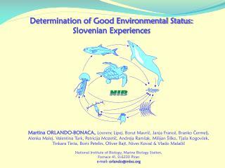 Determination  of  G ood  E nvironmental  Status : Slovenian  Experiences