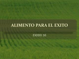 ALIMENTO PARA EL EXITO