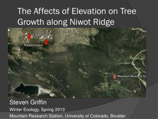 The Affects of Elevation on Tree Growth along Niwot Ridge