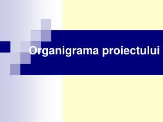 Organigrama proiectului