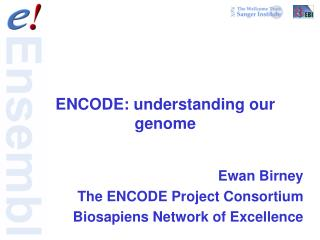 ENCODE: understanding our genome