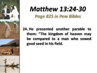 Matthew 13:24-30 Page 825 in Pew Bibles