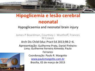 Hipoglicemia e lesão cerebral neonatal Hypoglicaemia and neonatal brain injury