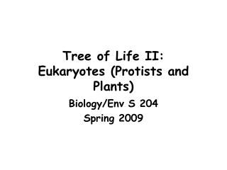 Tree of Life II: Eukaryotes (Protists and Plants)