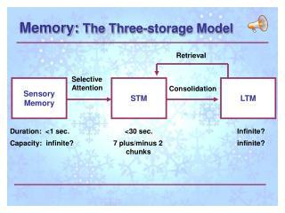 Memory:  The Three-storage Model