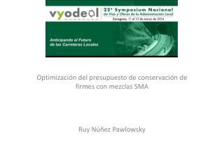 Optimización del presupuesto de conservación de firmes con mezclas SMA Ruy Núñez Pawlowsky