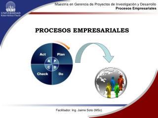 Maestría en Gerencia de Proyectos de Investigación y Desarrollo Procesos Empresariales