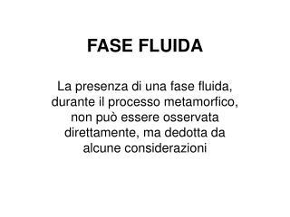 FASE FLUIDA