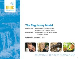 The Regulatory Model