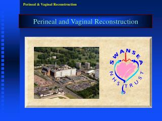 Perineal and Vaginal Reconstruction