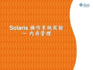 Solaris  操作系统实验 - 内存管理