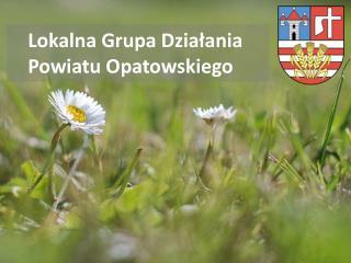 Lokalna Grupa Dzia?ania Powiatu Opatowskiego