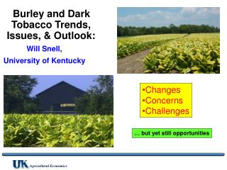Burley and Dark Tobacco Trends, Issues, & Outlook: Will Snell,  University of Kentucky