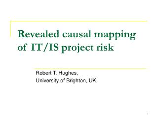Revealed causal mapping of IT/IS project risk