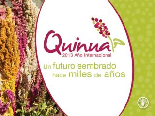 Rol de la Quinua  en la  Seguridad Alimentaria del  Perú