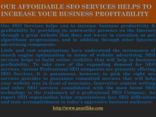 Our affordable SEO Services helps to increase your business profitability