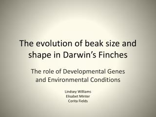 The evolution of beak size and shape in Darwin�s Finches