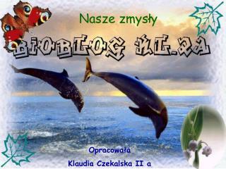 Opracowała  Klaudia Czekalska II a