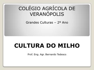 COLÉGIO AGRÍCOLA DE VERANÓPOLIS Grandes Culturas – 2º Ano